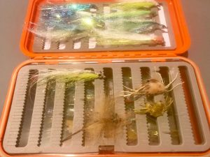 Fly box - crab patterns, shrimp pattern, Clousers