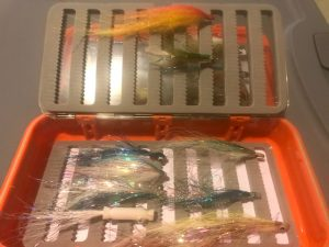 Flies for stripers